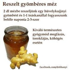 Reszelt gyömbéres méz Health Diet, Health Fitness, Healthy Cooking, Healthy Recipes, Raw Vegan, Natural Healing, How To Do Yoga, Health And Beauty, Healthy Lifestyle