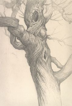 Justin Gerard Tree Drawings Pencil, Art Drawings, Amazing Drawings, Realistic Drawings, Gravure Photo, Tree Sketches, Tree Artwork, Forest Illustration, Tree Photography