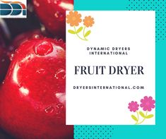 Fruit Dryer Learning All About The Preservation Tactics There are many various kinds of available today from the modest rebate brands to the cheap and moderate ones to t.