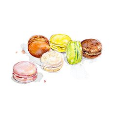 Macaron Le Bristol, Hotel Bristol, Macarons, Illustration, Illustrations