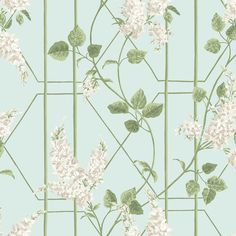 View Cole & Son Wallpaper Item Collection Botanical Botanica pattern name Wisteria color name Stone/Olive/D Egg. Theme Print enjoy this outstanding wallpaper. Cuttings available always. Fast Shipping Family owned since 1969 Luxury Wallpaper, Modern Wallpaper, Fabric Wallpaper, Designer Wallpaper, Bathroom Wallpaper, Duck Egg Blue Bedroom, Flower Power, Tableaux D'inspiration, Cole Son