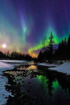"""Aurora Moonset"" by Cj Kale"