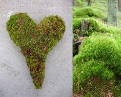 Fin i Formen: Med hjerte for naturen