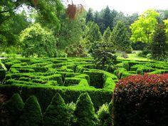 VanDusen Botanical Garden (Vancouver, Canada) on TripAdvisor: Hours, Address, Tickets & Tours, Attraction Reviews