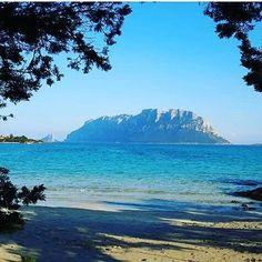 by http://ift.tt/1OJSkeg - Sardegna turismo by italylandscape.com #traveloffers #holiday | Magica Tavolara ... #goodmorning #olbia #tavolara #sud_super_pics #italiainunoscatto #loves_sardegna #loves_italy #volgo_sardegna #volgoolbia #lanuovasardegna #sardegnamare #sardegnaalmare #ilovespain #lovebrazil #ilovefrance #iloveyou #best_selfie_ #mylove Foto presente anche su http://ift.tt/1tOf9XD | February 02 2016 at 06:34AM (ph nicoama67 ) | #traveloffers #holiday | INSERISCI ANCHE TU offerte di…