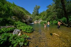 Today we walk into a wonderful creek made ​​of crystal clear water. We go for a walk in an inviolate nature, looking for the origins of this river in the mountains around here. We are 33trek, near Rome in the Turano Valley