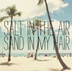 Palm tree quotes florida the beach 32 Best ideas Palm Tree Quotes, Summer Beach Quotes, Island Quotes, Offshore Wind, Ocean Quotes, Standup Paddle Board, Sup Surf, Learn To Surf, Big Waves