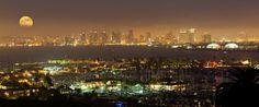 San Diego Skyline by Andrew Shoemaker.