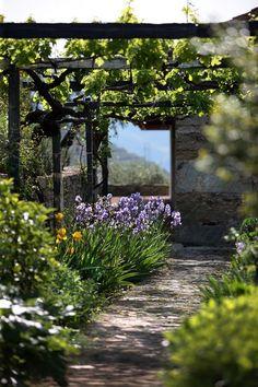 summer garden pergola