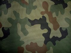 Polish WZ.93 Pantera pattern