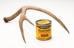 Whether it's an antler mount hanging outside on the barn or a shed found in the woods, antlers that have been bleached by the elements can be restored to a natural color with Minwax Golden Oak stain. Rub it on with a cotton cloth and let dry. One coat usually does the trick, but you can repeat until you've achieved the desired coloration.