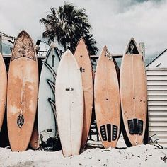 Surf boards, vacation vibes, vacation feels, surfing feels See More At www. - T R A V E L - You are in the right place about myrtle Beach Vacation Here Beach Aesthetic, Summer Aesthetic, Travel Aesthetic, Aesthetic Photo, Aesthetic Pictures, Aesthetic Themes, Aesthetic Bedroom, Bedroom Wall Collage, Photo Wall Collage