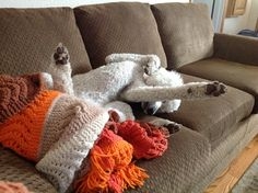 """""""Isabella enjoying the couch in Mesa. Standard Poodles, Little People, Life Is Good, I Am Awesome, Couch, Throw Pillows, Pets, Poodle, Settee"""