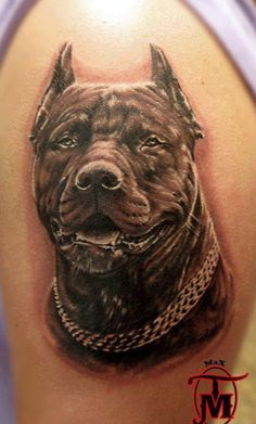 apbt: Incredible detail in this tattoo#pitbulls #dog breeds #canine pet #dogs #pitbull puppy #pitbull dog #pitbull breeds #red nose pitbull #pitbull terrier #apbt #staffordshire terrier #amstaff #english terrier #black pitbull #moo moo pit #chocolate pitbull #pitbull poodle #blue nosed pit #pitbull mutt #mans best friend #4 month old pitbull