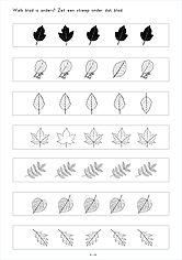 welk blad is anders? visuele verschillen