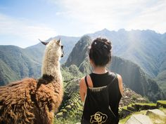She was admiring Machu Picchu and a llama decided to join her.
