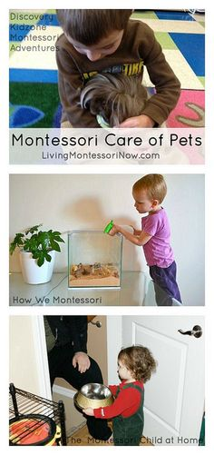 Montessori resources for care of pets at home or in the classroom