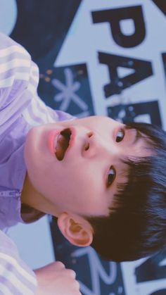 Carat Seventeen, Mingyu Seventeen, Seventeen Debut, Seungkwan, Wonwoo, Jeonghan, Lee Jihoon, 22 November, Seventeen Wallpapers