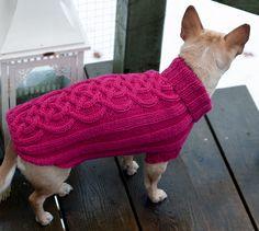 Coat Patterns, Knitting Patterns, Dog Sweater Pattern, West Highland White, White Terrier, Dog Sweaters, Dog Coats, Big Dogs, Pets