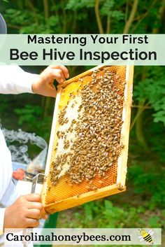 Knowing how to perform new bee hive inspections properly increases your chances of beekeeping success. via @https://www.pinterest.com/carolinahoneyb