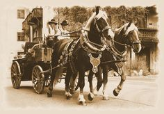 sepia, Kutsche,  'Pferdegespann' von hako bei artflakes.com als Poster oder Kunstdruck $16.63