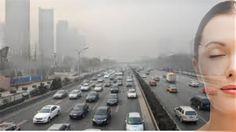 PURIFICACION DE AIRE AIRLIFE TE DICE La gente respira alrededor de 10 ml de aire por día, por consiguiente, el pulmón recibe dosis significativas de muchos contaminantes del aire, desde plomo y diesel, hasta materia fecal. En conclusión la fórmula es sencilla, cuanto menor sea la contaminación atmosférica de una ciudad, mejor serpa la salud respiratoria y cardiovascular de su población a corto y mediano plazo. Y menor las enfermedades y daños cardio respiratorios.