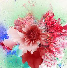 bouquet by kahori maki, via Behance