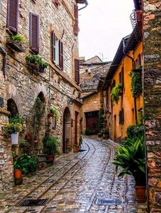 Travel Inspiration for Italy - Spello, Umbria, Italia Places Around The World, Oh The Places You'll Go, Travel Around The World, Places To Travel, Travel Destinations, Places To Visit, Around The Worlds, Holiday Destinations, Italy Vacation