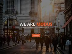 View the Modus Template Details