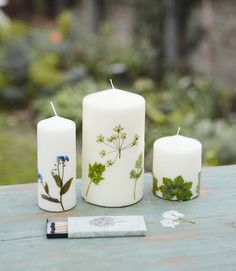Botanical Candles - Forget-me-nots, Queen Anne's lace, and chervil dress up store-bought pillars (from  Gifts from the Garden by Debora Robertson)