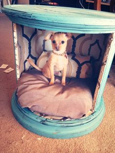 Dog bed end table!