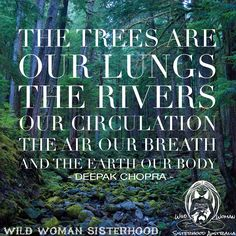 """""""The trees are our lungs, the rivers our circulation, the air our breath, and the earth our body."""" – Deepak Chopra"""