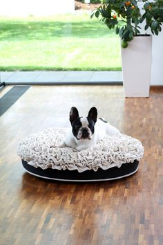 French Bulldog Puppy on a Bed of Roses Dog Bed from Pet Interiors.