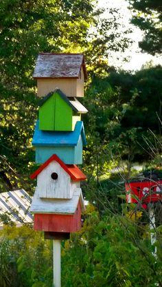 High rise bird condos