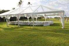 The Loulu Palm Estate!!!
