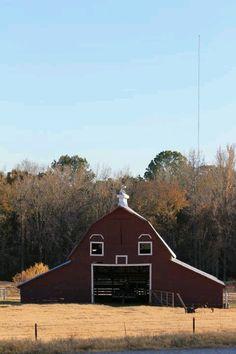 unexpect face, farm, barn face, texas barns, barnsbuild, favorit barn, texa barn, happi barn, countri