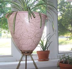 Pink atomic planter with gold swirls