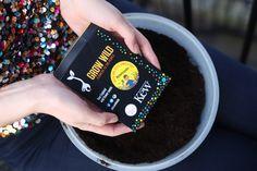 2016 Grow Wild seed packet give-away | Grow Wild