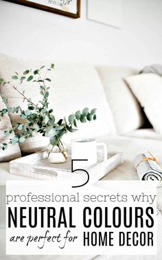 5 professional secrets to using neutral colours in home design. Interior design using neutral colours. Why you need to use neutral colours in your home more. Get a great look every time. Interior Design Tips, Best Interior, Interior Styling, Nordic Interior, Interior Paint, Luxury Interior, Neutral Color Scheme, Colour Schemes, Color Palettes
