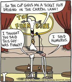 36 New Ideas Science Humor Anatomy Puns Radiology Humor, Medical Humor, Nurse Humor, Funny Medical, Radiography Humor, Chiropractic Humor, Chiropractic Center, Anatomy Humor, Dental Jokes