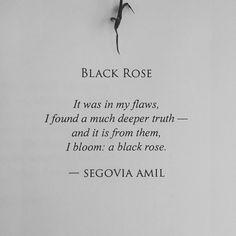 Black Rose by Segovia Amil www.segoviaamilpoetry.com