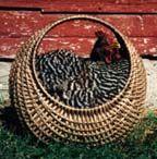 Hen Basket Kit