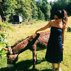 Hanging out with Donkeys what more could i want this Sunday! ✌️☀️ Wearing the navy UTD , big week ahead we are filming a new video tomorrow stay tuned and off to Germany for the Outdoor Show to present our new designs! 💃🏻✨🎉 #entrepreneur #crazylife #business #ceo #design #traveldress #donkey
