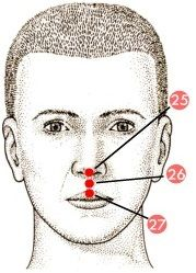 Acupressure-GV 26: for Brain/Mental Function.- I will try this for fibro fog