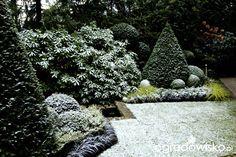 Ogród nie tylko bukszpanowy - część iii