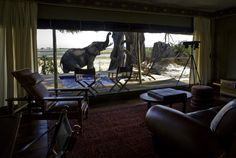 2. Zarafa Camp, Botswana