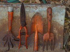 Vintage garden tool collection