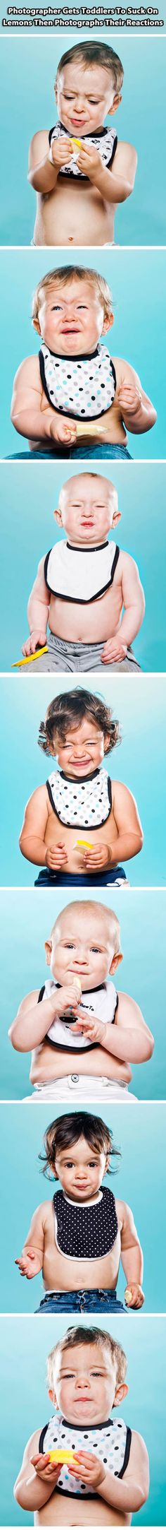 Toddlers react after they suck on lemons…