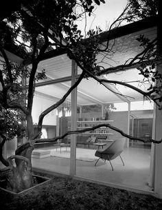 "scandinaviancollectors: "" Mid-century modern villa by George Vernon Russell, 1955: The Womb lounge chair by Eero Saarinen for Knoll, 1948. Photograph by Ernest Braun. / midcenturymodernfreak """