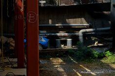 東京猫色 : 街中のステージ